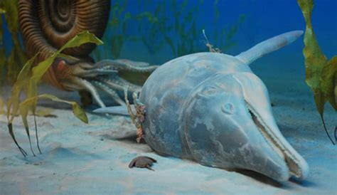 Dead Zones Could Lead to Mass-Extinction Event | The Inertia