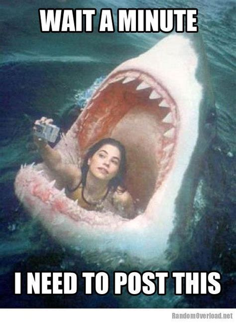 Funny memes about girls - Fotolip