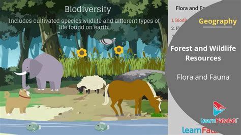 Forest and Wildlife Resources Class 10 CBSE Geography Part
