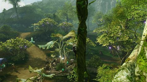 Fast Gold Farming Guide Through Tree Planting in Archeage