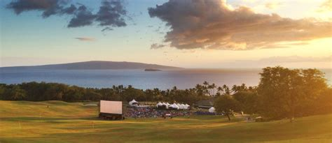 Maui Guide - Your Reviews & Our Favorites