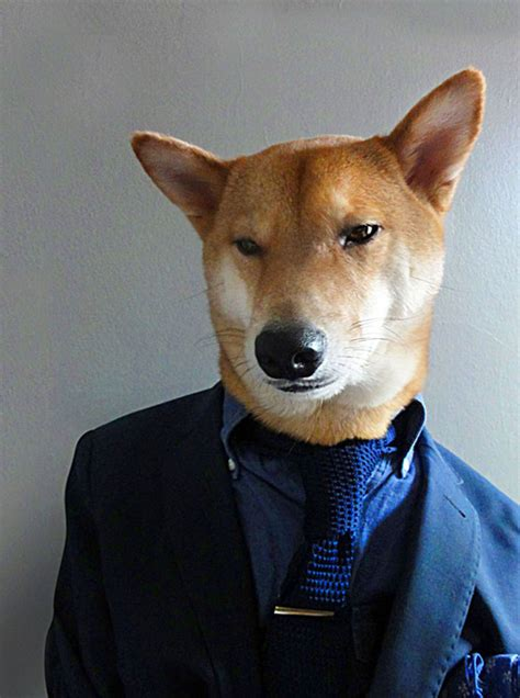 Menswear Dog Features Photos of Men's Fashion, Modeled by